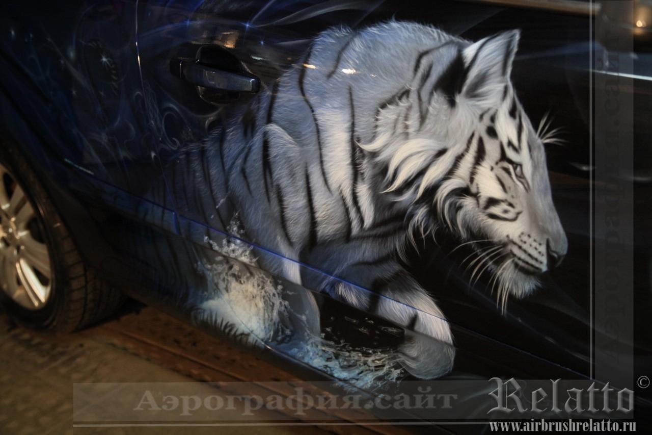 Белый тигр на автомобиле